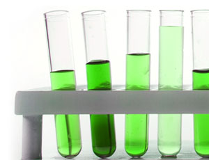 A rack of test tubes filled with green coloured liquid